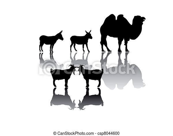 Un grupo de animales - csp8044600