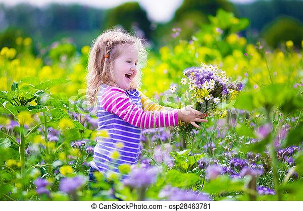 Una niña recogiendo flores silvestres en un campo - csp28463781