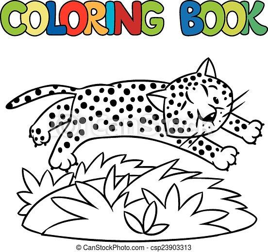 Poco, colorido, jaguar, libro, guepardo, o. Imagen, poco, colorido ...