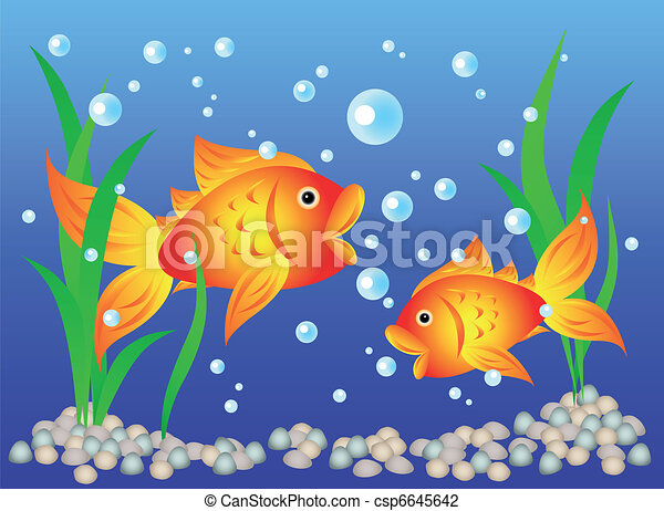 Poisson rouge aquarium amusement pebbles aquarium for Aquarium poisson rouge dessin