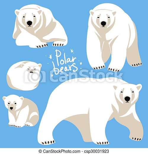 Polar Bears collection - csp30031923