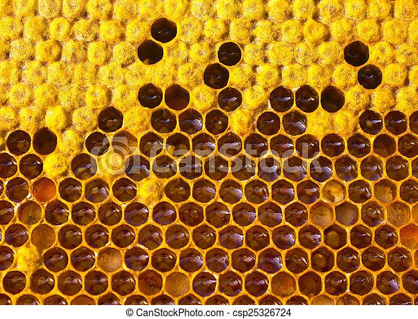 Cariño, néctar y polen - csp25326724