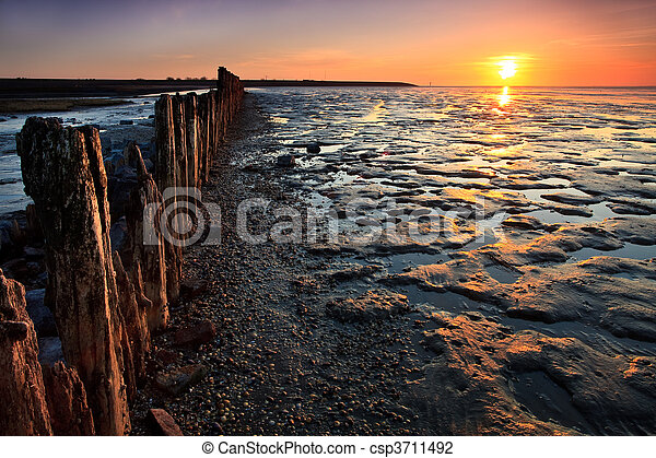 Poles in the ocean at sunset - csp3711492