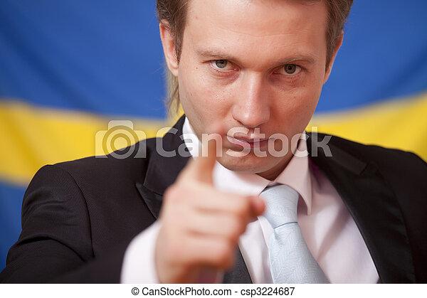 politiek, zweden - csp3224687