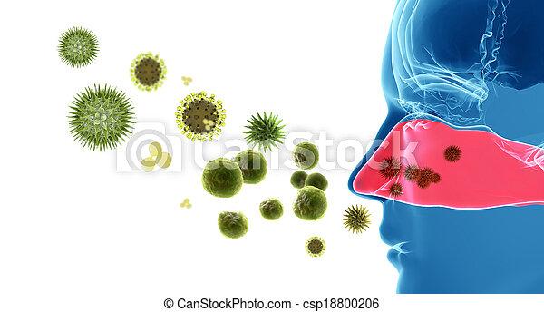 Pollen allergy / Hay fever - csp18800206