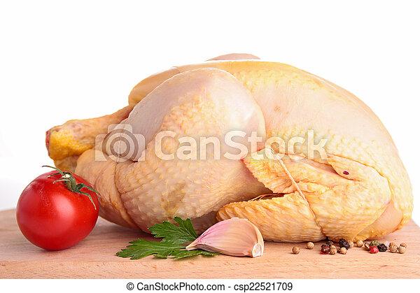 pollo - csp22521709