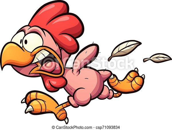 Pollo desplumado - csp71093834