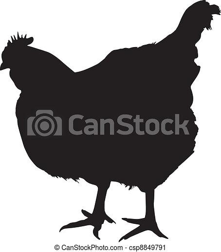 Silueta de pollo - csp8849791