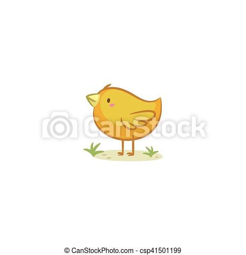 Chick - csp41501199