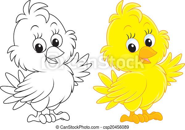 Chick - csp20456089