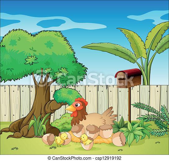 Una gallina y sus polluelos - csp12919192