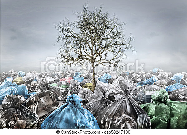 Pollution concept. Dead tree in area full of trash on a gloomy background. Save planet. - csp58247100