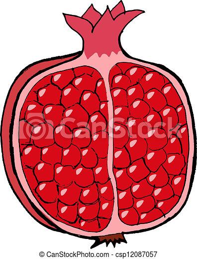 hand drawn vector cartoon illustration of pomegranate clipart rh canstockphoto com pomegranate clipart black and white pomegranate tree clipart