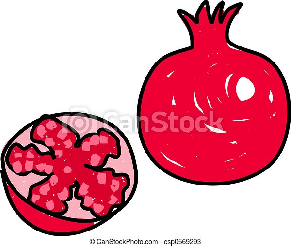 rich red pomegranate isolated on white drawn in toddler art rh canstockphoto com pomegranate clipart black and white pomegranate clipart free