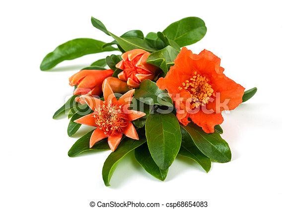 pomegranate flowers - csp68654083