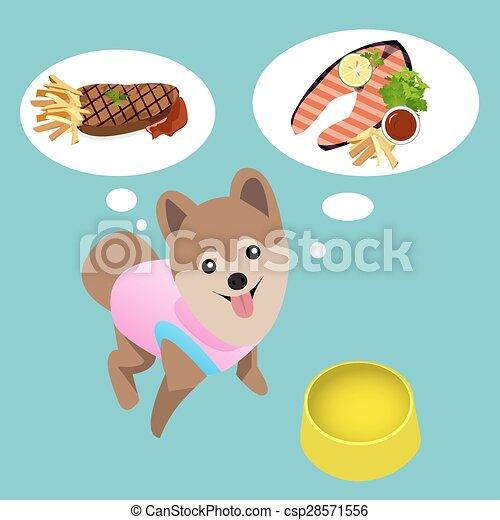 Pomeranian Dog With Empty Bowl Want To Eat Steak Pomeranian Dog