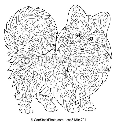 pomeranian puppy dog vector