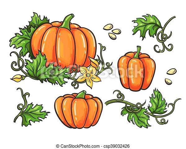 pompoen seeds vrijstaand hand vector groente getrokken bladeren tekening set plant. Black Bedroom Furniture Sets. Home Design Ideas