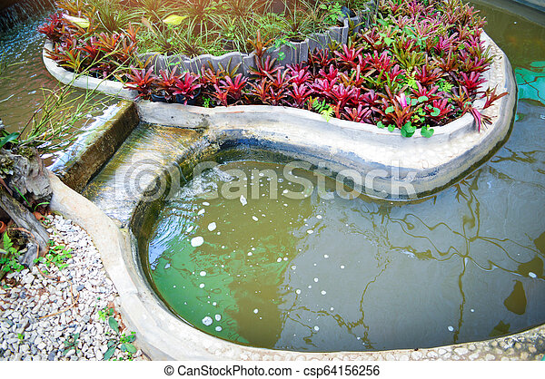 Pond Garden With Plants Small Waterfall Creating A Pond Water