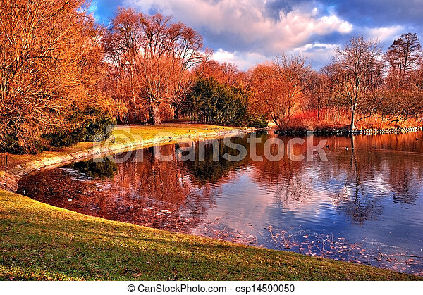 Pond in the park - csp14590050