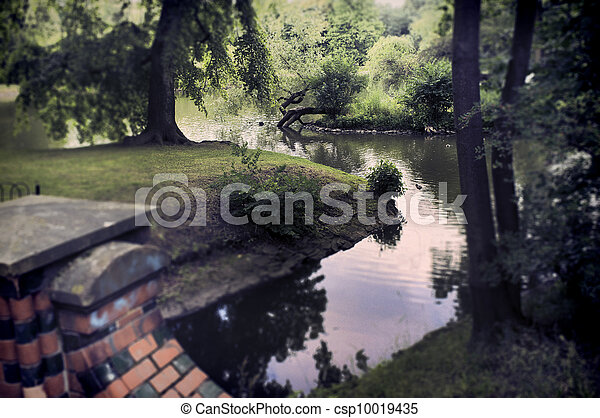Pond in the park - csp10019435