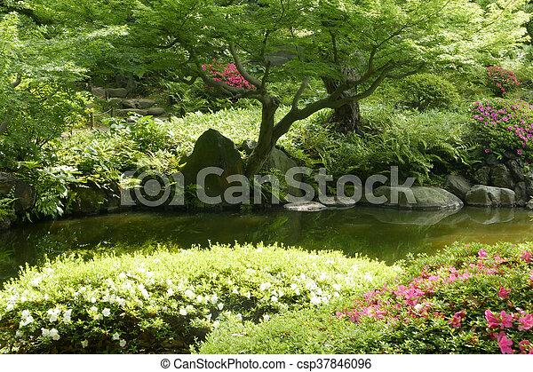 Pond, Plant, Tree, Flower In Japanese Zen Garden   Csp37846096