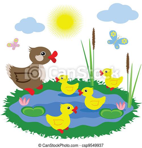 Pond with ducks - csp9549937