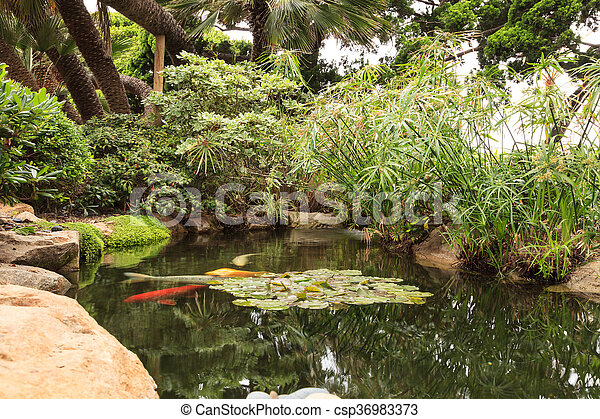 Pond With Waterfall Relaxing Zen Like A Koi
