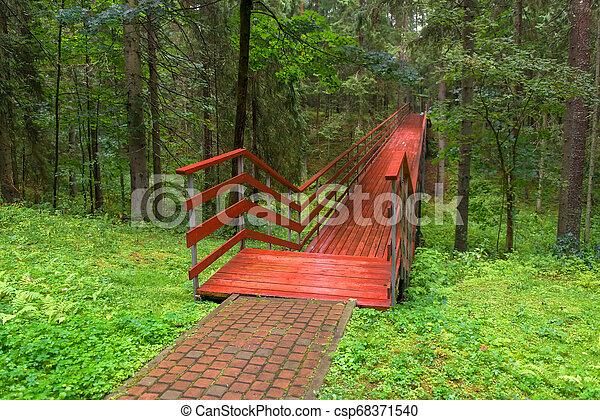 pont, pluvieux, été, bois, sur, forêt, ravin, jour - csp68371540