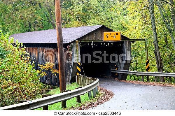 ponte coberta - csp2503446