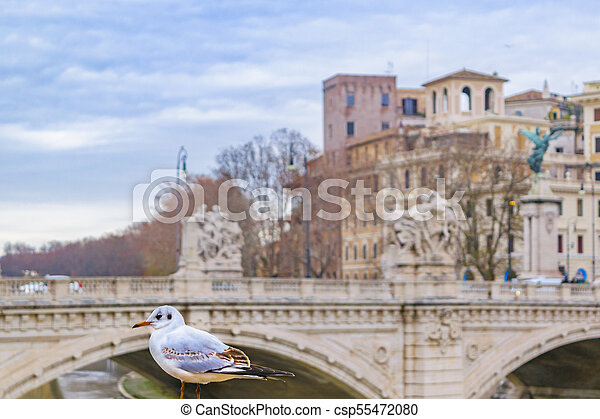 Ponte Vittorio Emanuele II, Rome, Italy - csp55472080