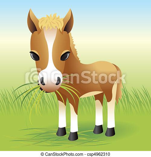 pony, pferd - csp4962310