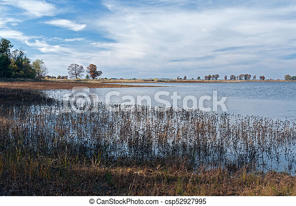 Pools and Marshes at Necedah - csp52927995