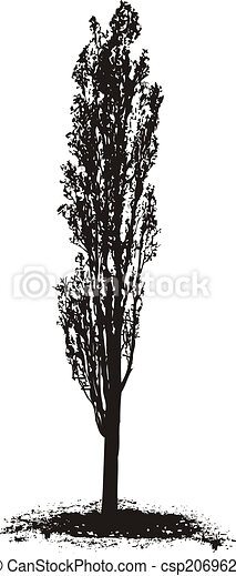 Poplar Tree - csp2069622