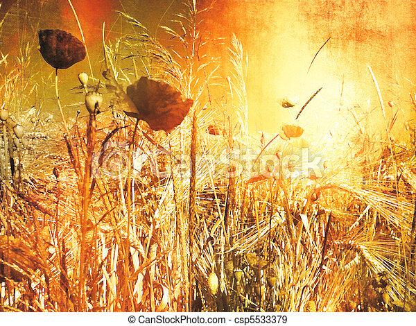 Poppy field - vintage painting look - csp5533379