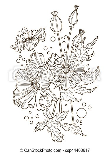 Poppy flowers coloring book vector illustration. tattoo stencil ...