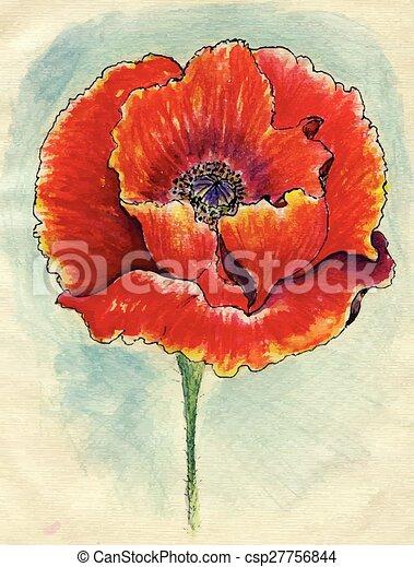 Poppy flowers sketch grunge sketch of poppy flowers on eps poppy flowers sketch csp27756844 mightylinksfo