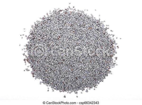 Poppy seeds on white background - csp66342343