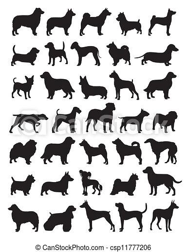 Popular dog breeds silhouettes - csp11777206