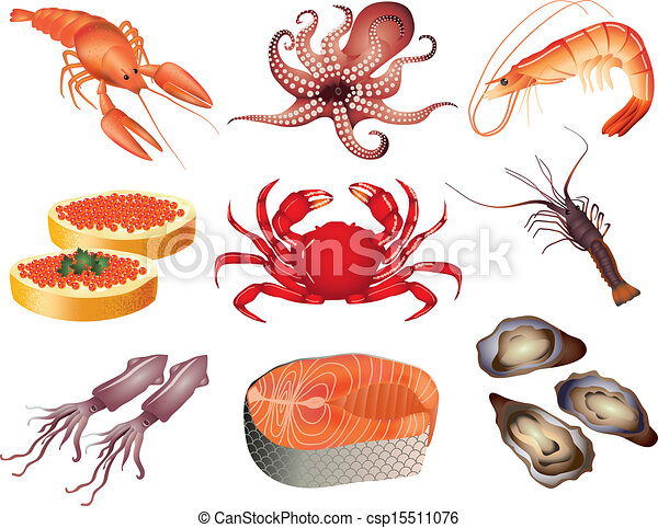 popular seafood vector set popular seafood products photo