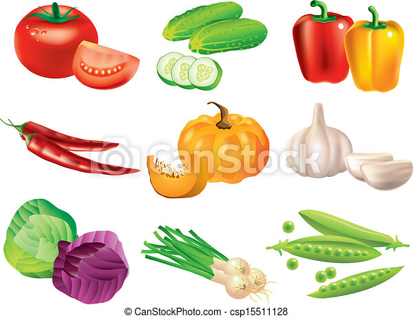 popular vegetables vector set - csp15511128