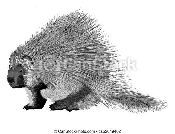 Line Drawing Hedgehog : How to draw a zentangle hedgehog youtube