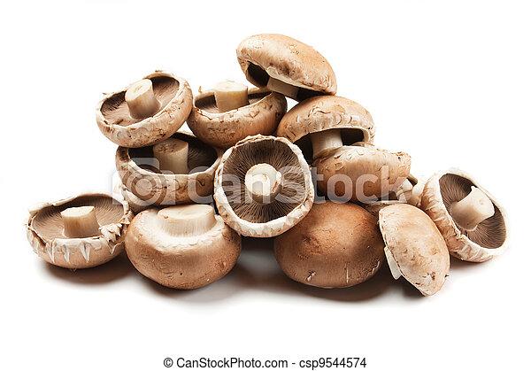 Portabello mushrooms - csp9544574