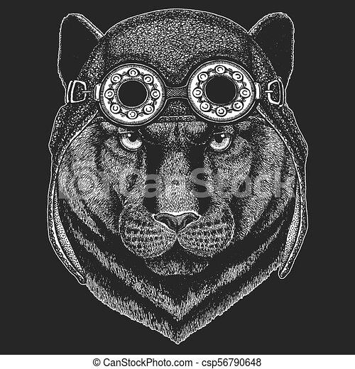 Porter, écusson, puma, panthère, image, emblème, main, t-shirt ...