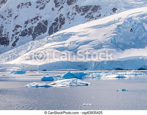 porto, drifting, andvord, península, gelo, baía, antártica, neko, antárctico, selos, floe - csp63935425