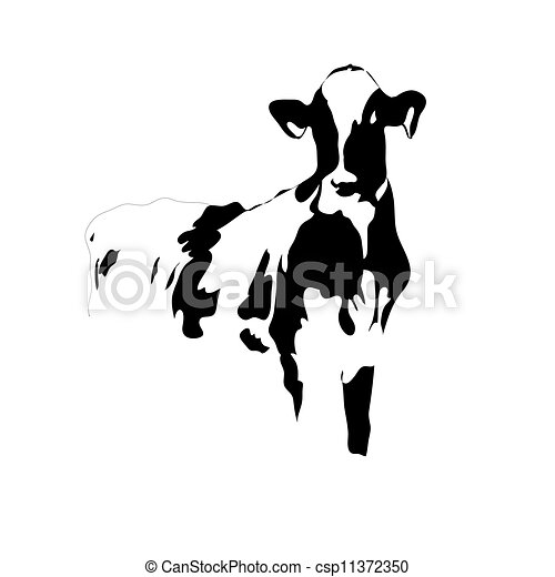 Portrait big black and white cow vector - csp11372350