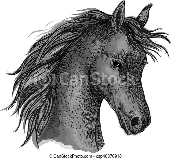 Portrait cheval noir t te croquis profil cheval look timide croquis vecteur noir - Tete de cheval dessin ...