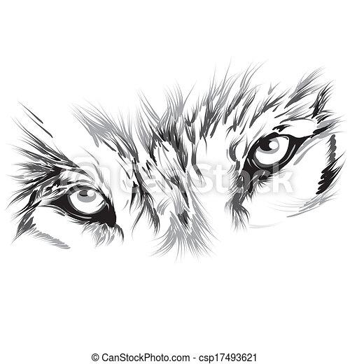 Portrait of a wolf - csp17493621
