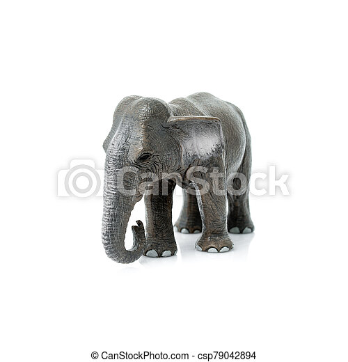 Portrait of an elephant isolated on the white background. - csp79042894