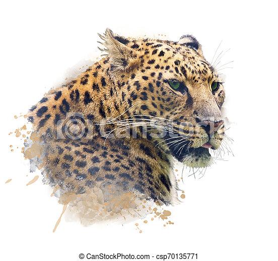 Portrait of Leopard .Watercolor illustration - csp70135771